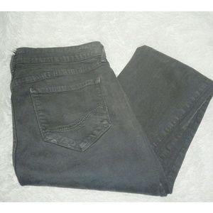 NYDJ Gray Pants